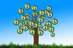Financial Support and Your Small Business