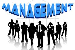 Top 5 Upper Management Positions (And How to Get Them)