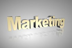 Why Marketing Management is Critically Important for Your Business