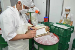 In the Food Industry? How to Increase Productivity in Your Business