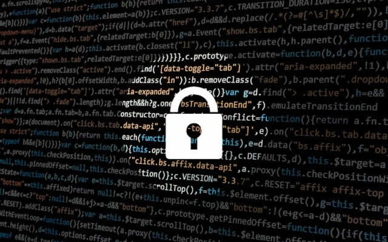 What are the Different Security Options for Businesses?