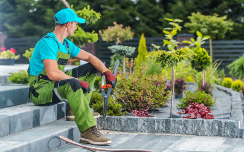 Landscaping Ideas for Your Business