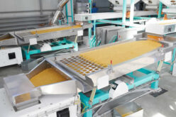 Ways To Improve Product Quality in Food Processing